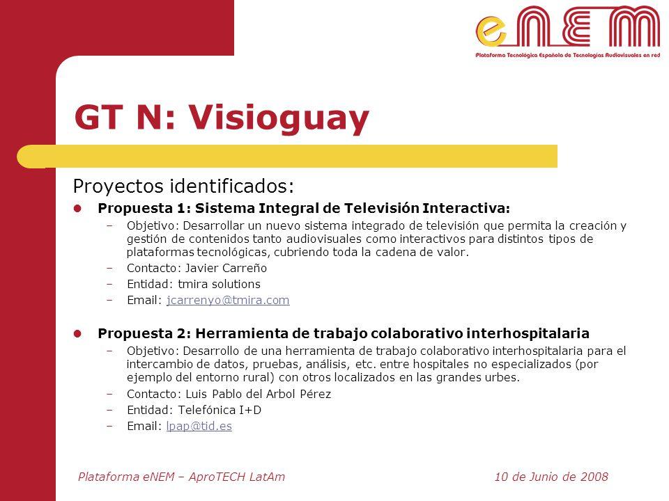 GT N: Visioguay Proyectos identificados: