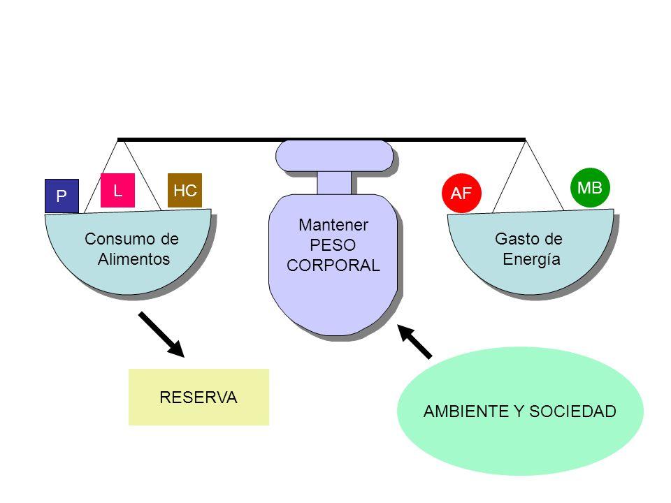 Mantener PESO. CORPORAL. MB. L. HC. AF. P. Consumo de. Alimentos. Gasto de. Energía. AMBIENTE Y SOCIEDAD.