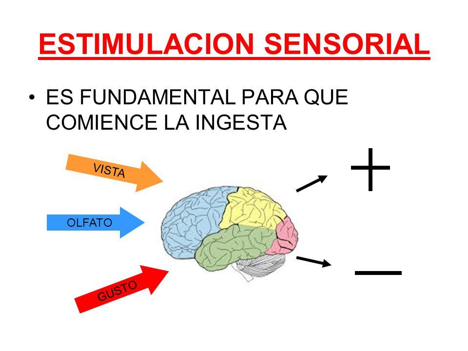 ESTIMULACION SENSORIAL