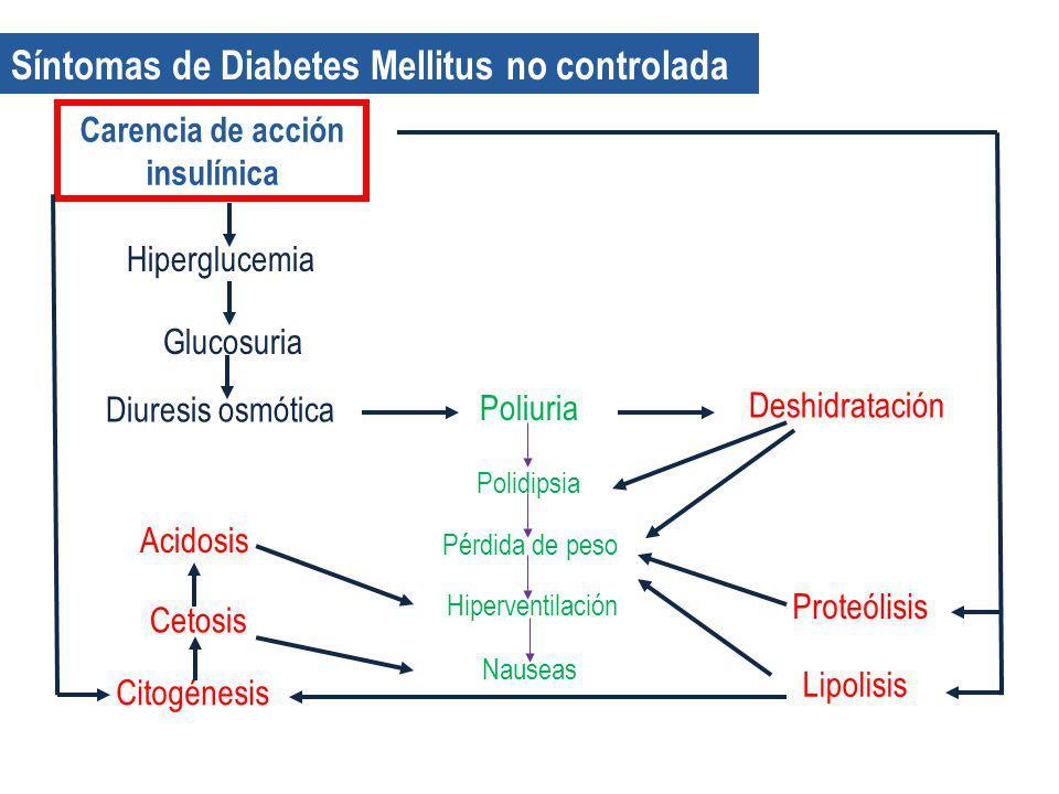 Carencia de acción insulínica
