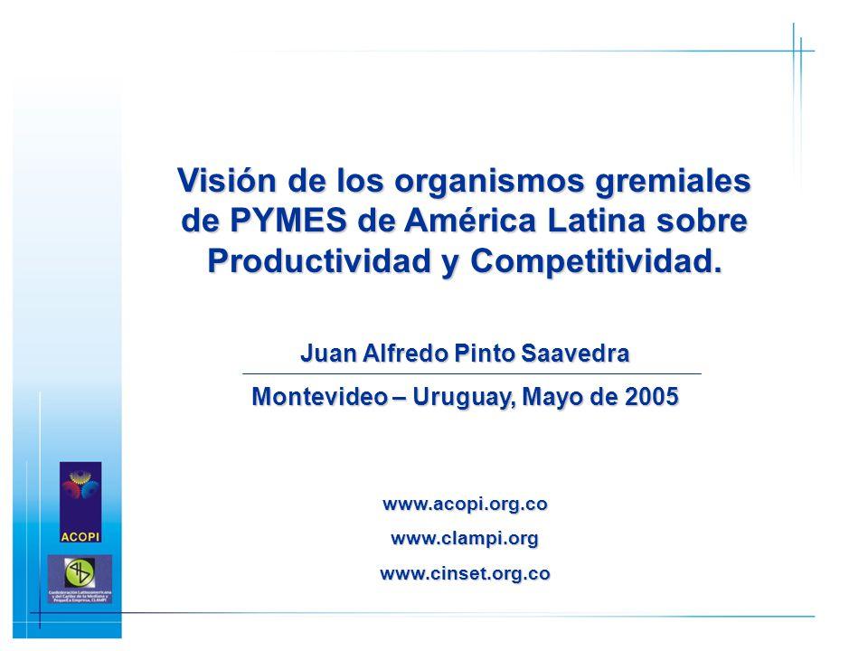 Juan Alfredo Pinto Saavedra Montevideo – Uruguay, Mayo de 2005
