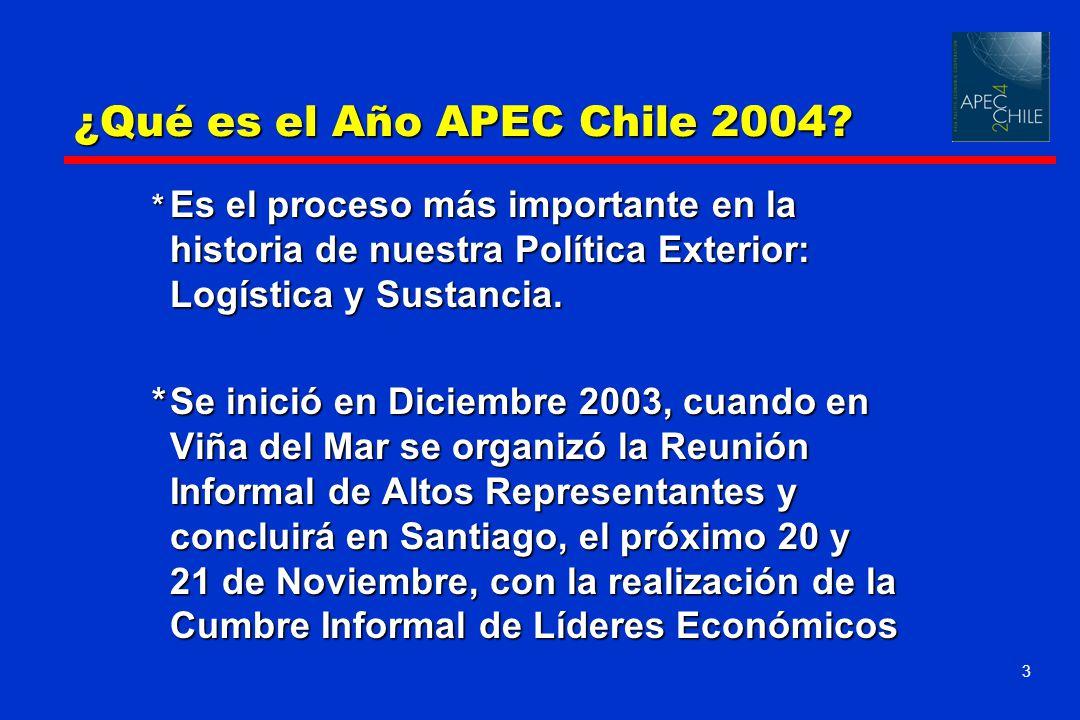 ¿Qué es el Año APEC Chile 2004