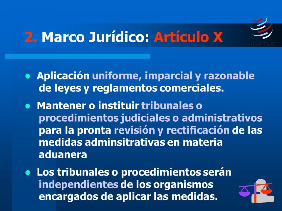 2. Marco Jurídico: Artículo X