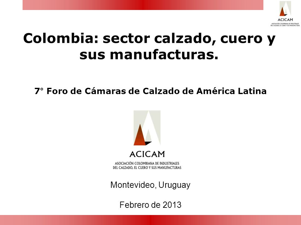 Colombia: sector calzado, cuero y sus manufacturas.