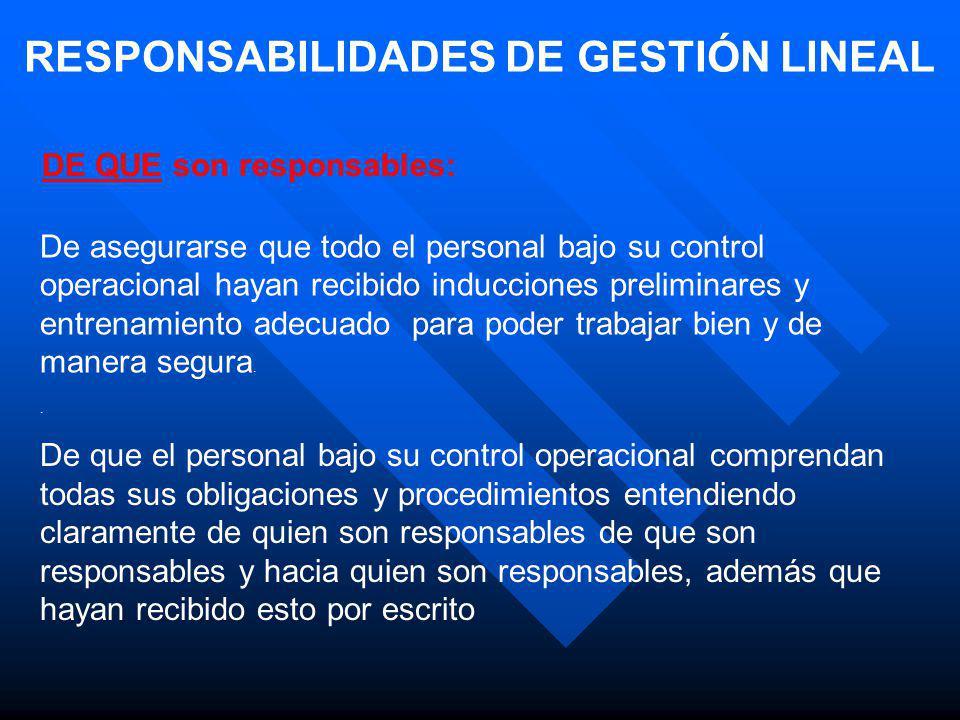 RESPONSABILIDADES DE GESTIÓN LINEAL