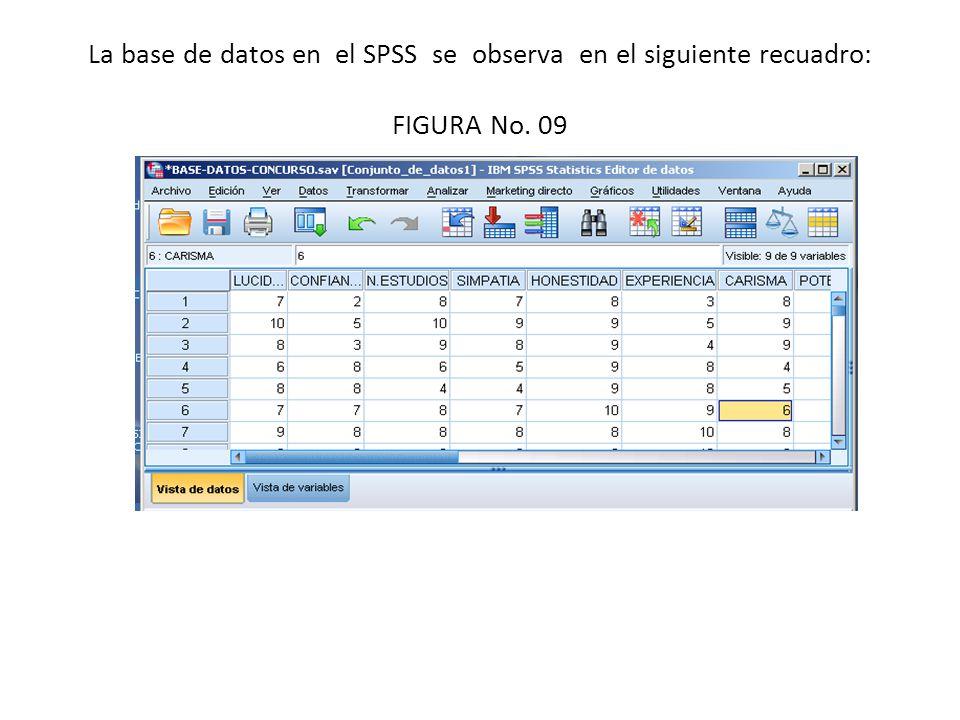La base de datos en el SPSS se observa en el siguiente recuadro: FIGURA No. 09