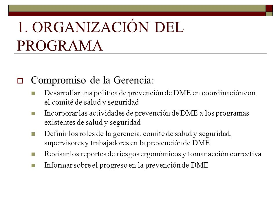 1. ORGANIZACIÓN DEL PROGRAMA