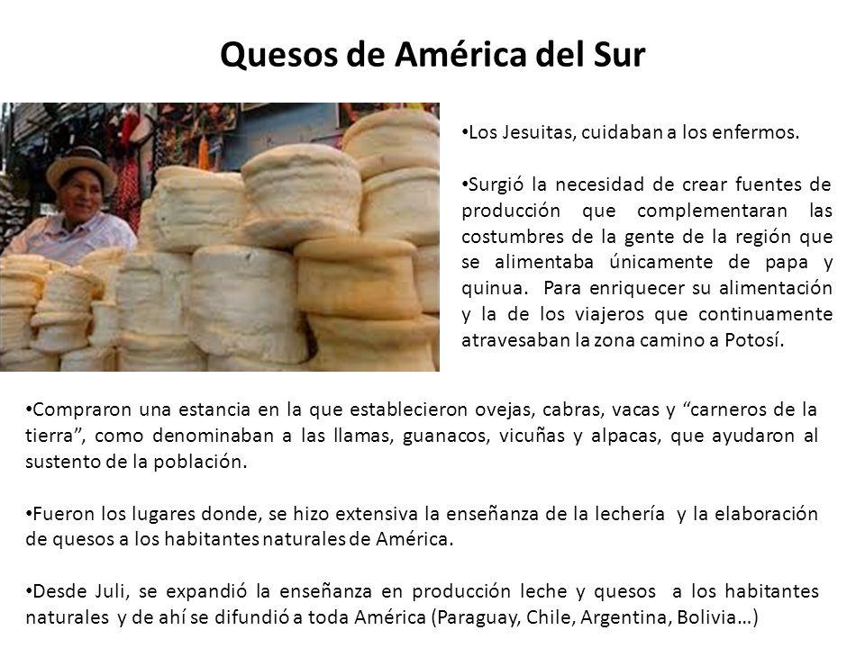 Quesos de América del Sur