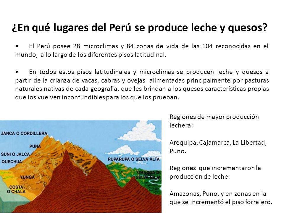 ¿En qué lugares del Perú se produce leche y quesos