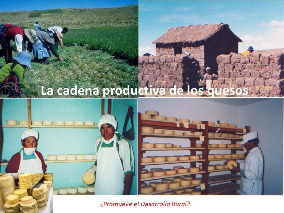 La cadena productiva de los quesos
