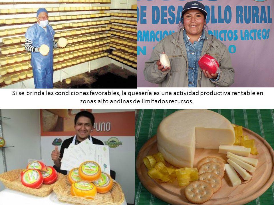 Si se brinda las condiciones favorables, la quesería es una actividad productiva rentable en zonas alto andinas de limitados recursos.