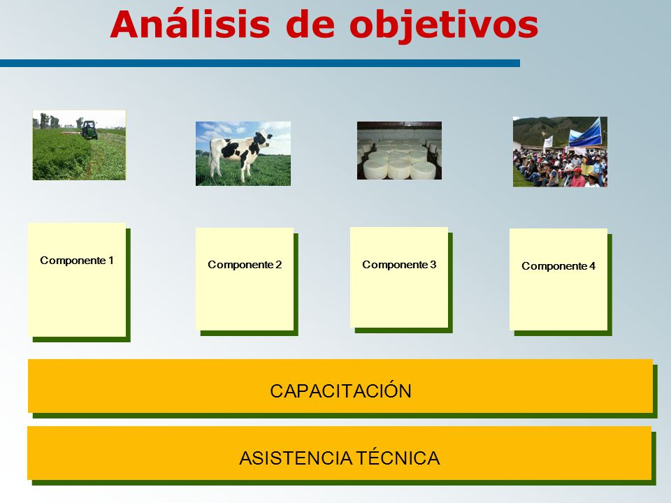 Análisis de objetivos CAPACITACIÓN ASISTENCIA TÉCNICA Componente 1