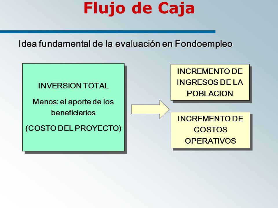 Flujo de Caja Idea fundamental de la evaluación en Fondoempleo