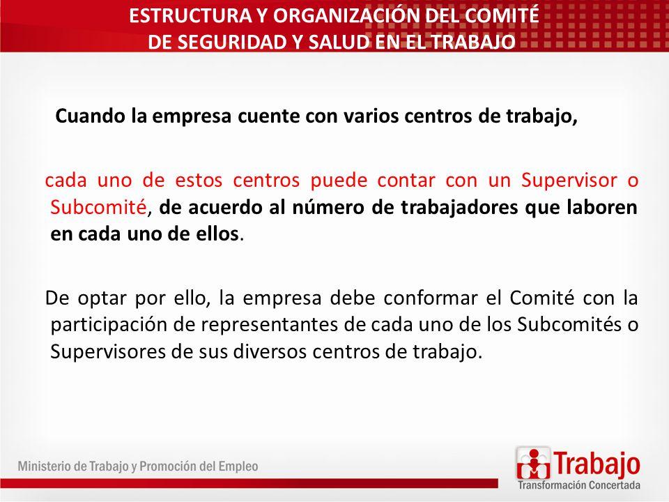 ESTRUCTURA Y ORGANIZACIÓN DEL COMITÉ