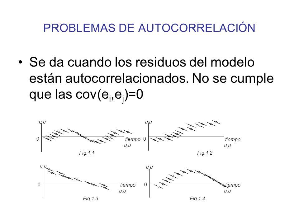 PROBLEMAS DE AUTOCORRELACIÓN