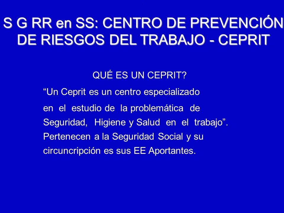 S G RR en SS: CENTRO DE PREVENCIÓN DE RIESGOS DEL TRABAJO - CEPRIT