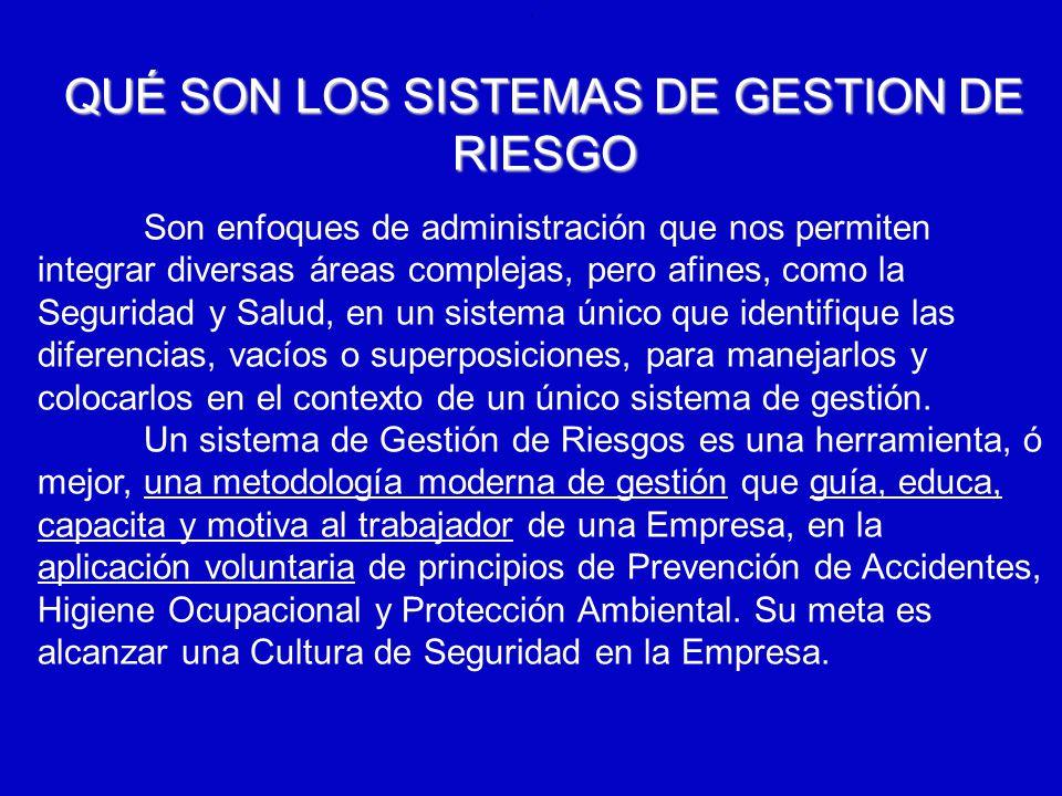 QUÉ SON LOS SISTEMAS DE GESTION DE RIESGO