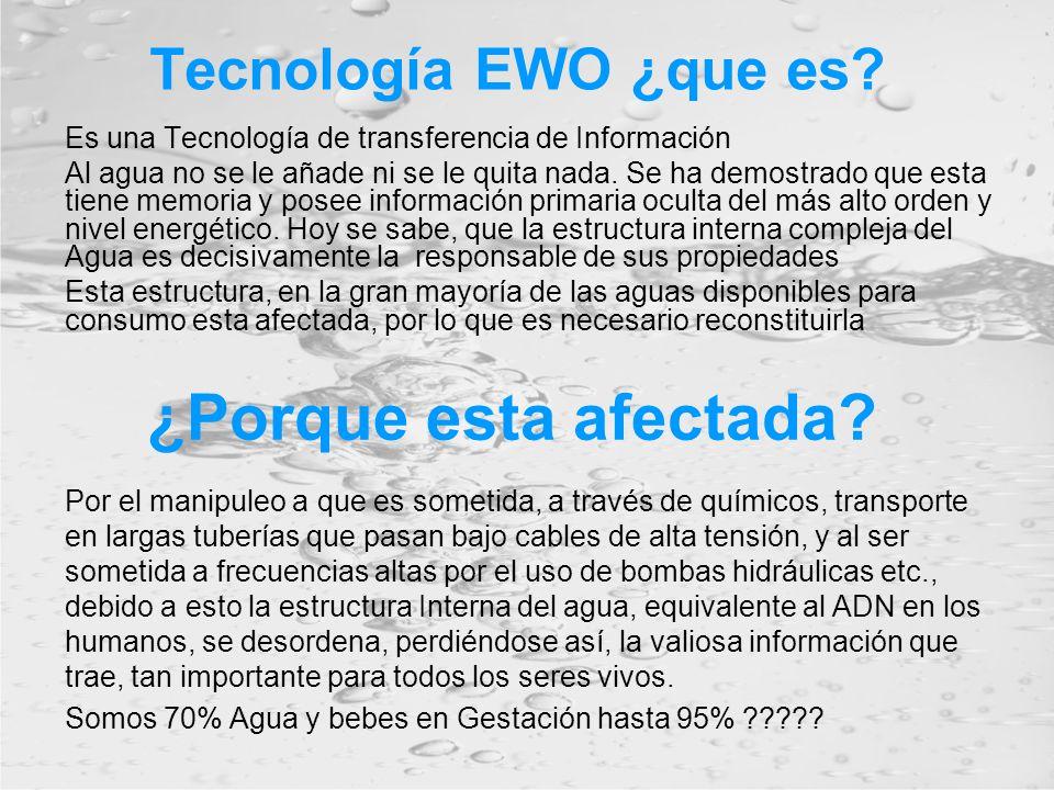 ¿Porque esta afectada Tecnología EWO ¿que es