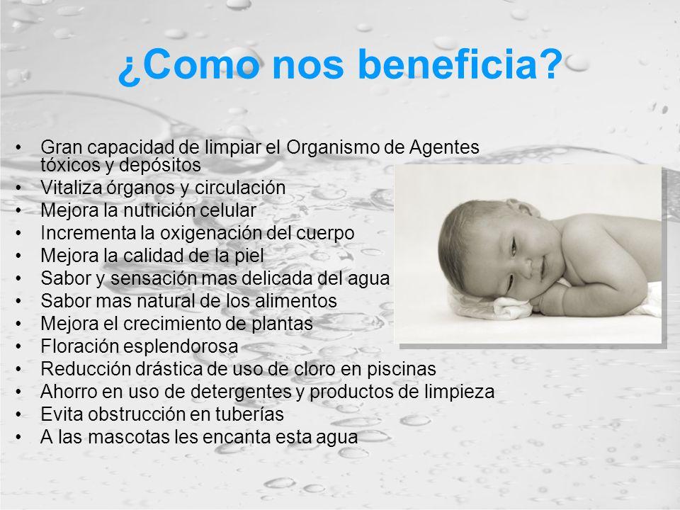 ¿Como nos beneficia Gran capacidad de limpiar el Organismo de Agentes tóxicos y depósitos. Vitaliza órganos y circulación.
