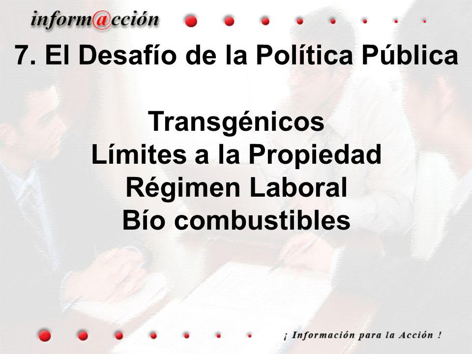 7. El Desafío de la Política Pública