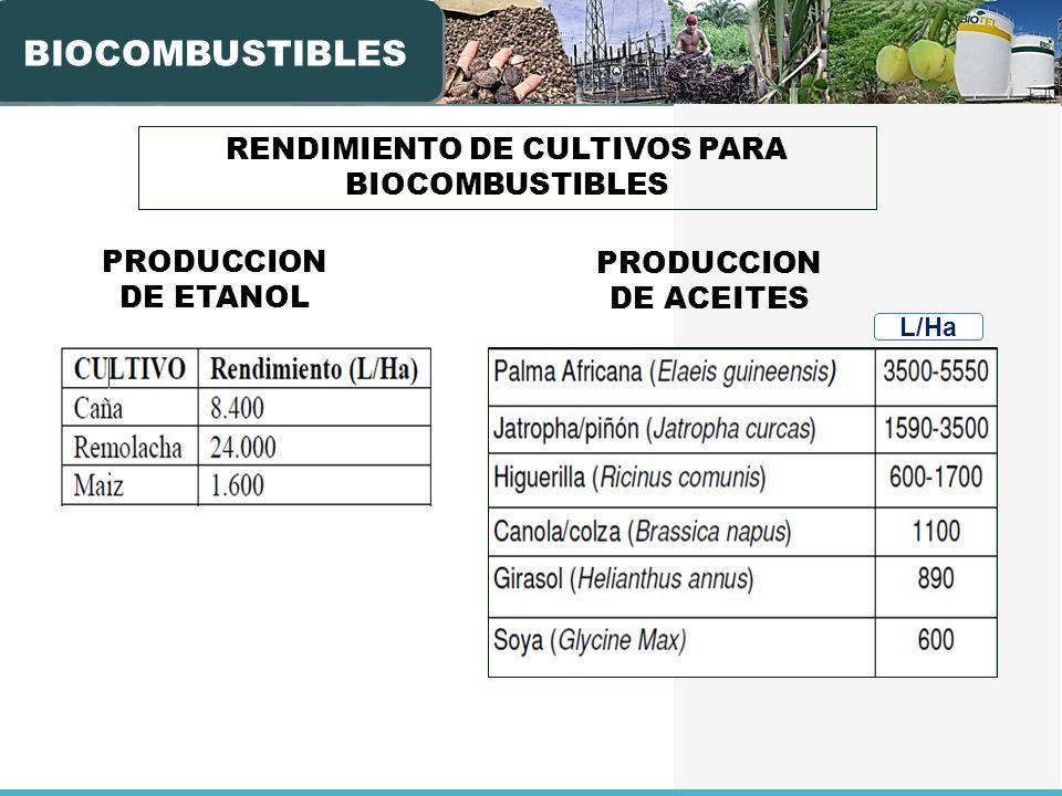 RENDIMIENTO DE CULTIVOS PARA BIOCOMBUSTIBLES