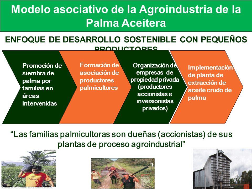 Modelo asociativo de la Agroindustria de la Palma Aceitera