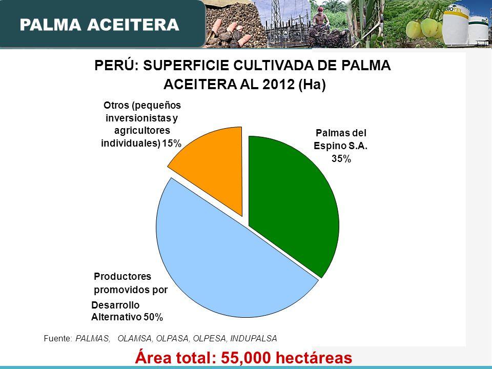 PALMA ACEITERA Área total: 55,000 hectáreas