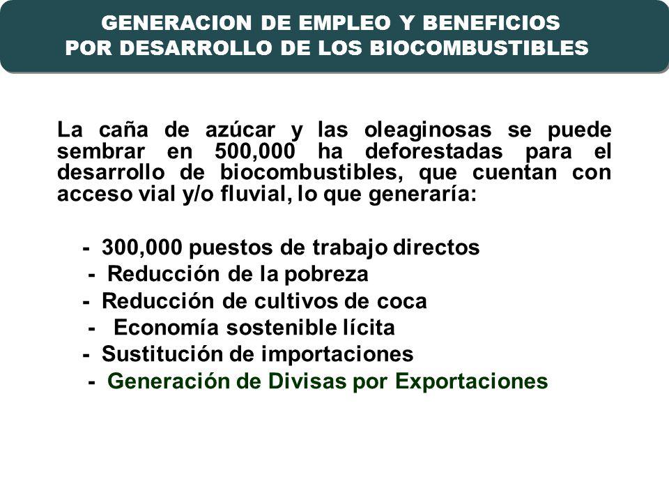 - 300,000 puestos de trabajo directos - Reducción de la pobreza