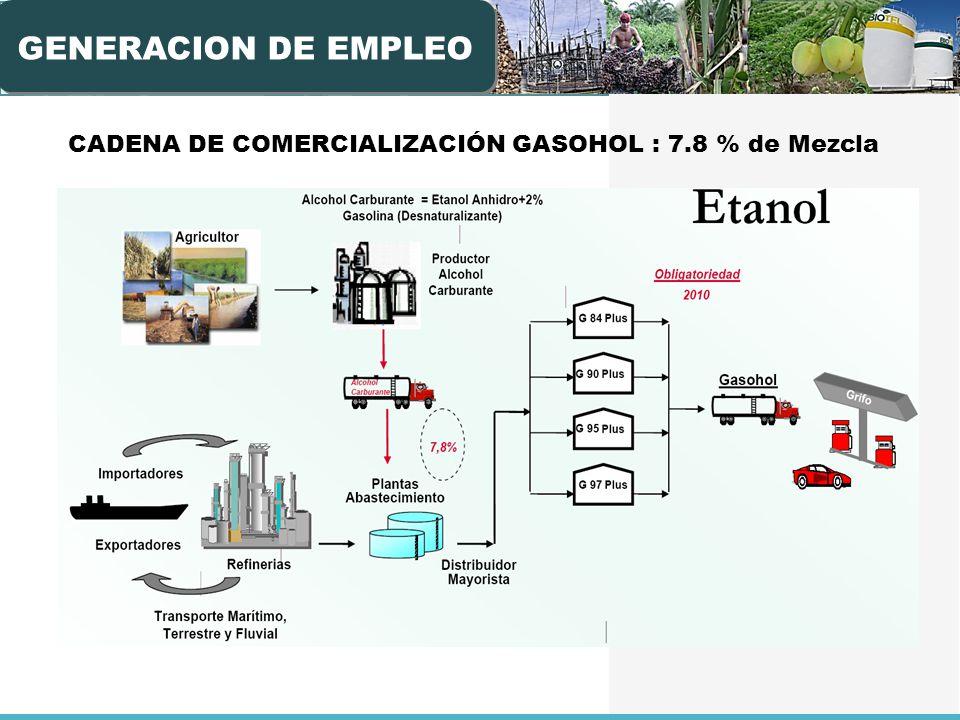 CADENA DE COMERCIALIZACIÓN GASOHOL : 7.8 % de Mezcla