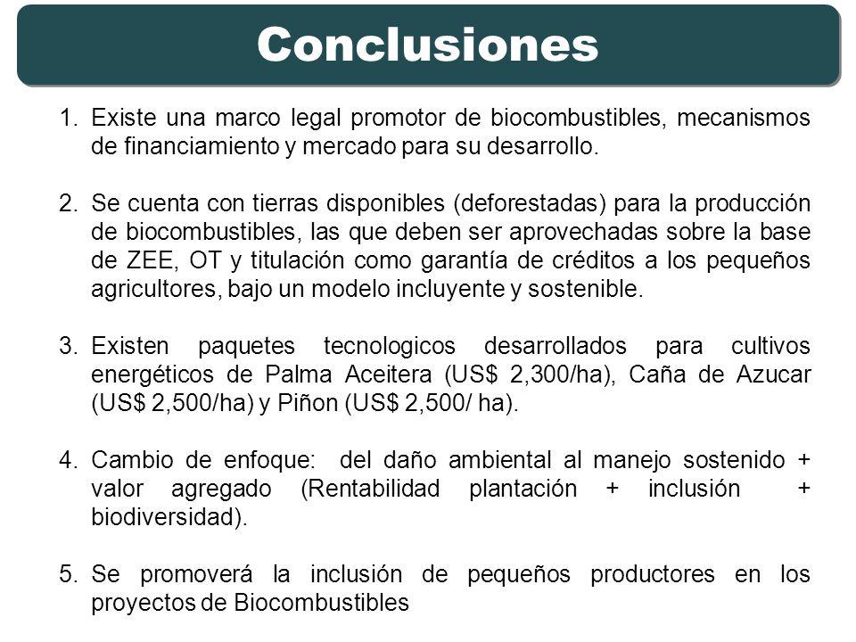 Conclusiones Existe una marco legal promotor de biocombustibles, mecanismos de financiamiento y mercado para su desarrollo.
