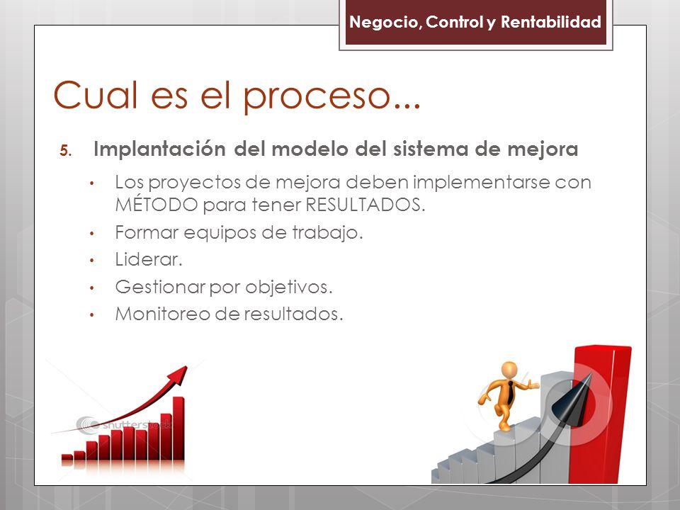 Cual es el proceso... Implantación del modelo del sistema de mejora