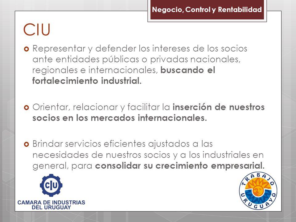 CIU Negocio, Control y Rentabilidad.
