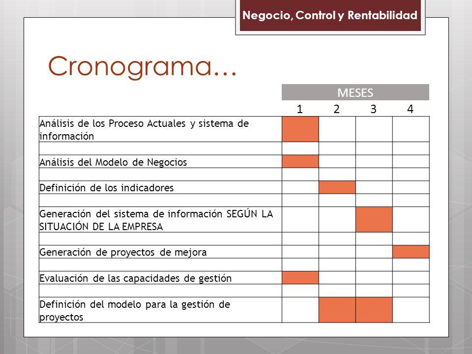 Cronograma… MESES 1 2 3 4 Negocio, Control y Rentabilidad