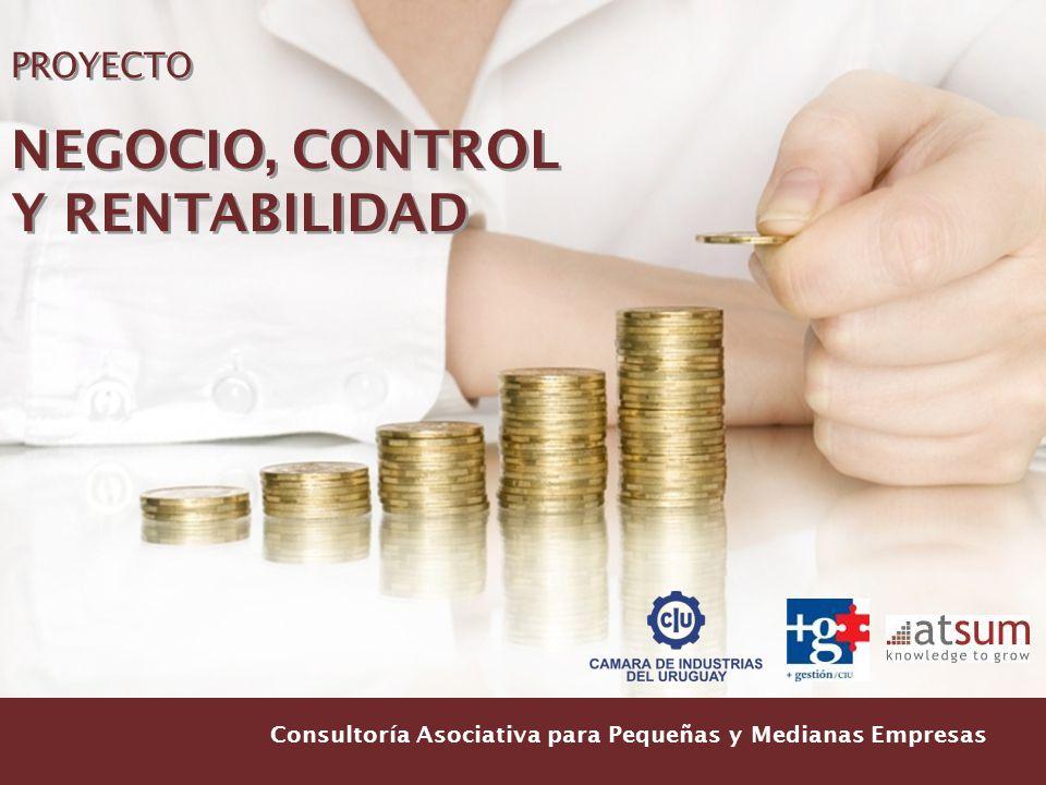 NEGOCIO, CONTROL Y RENTABILIDAD