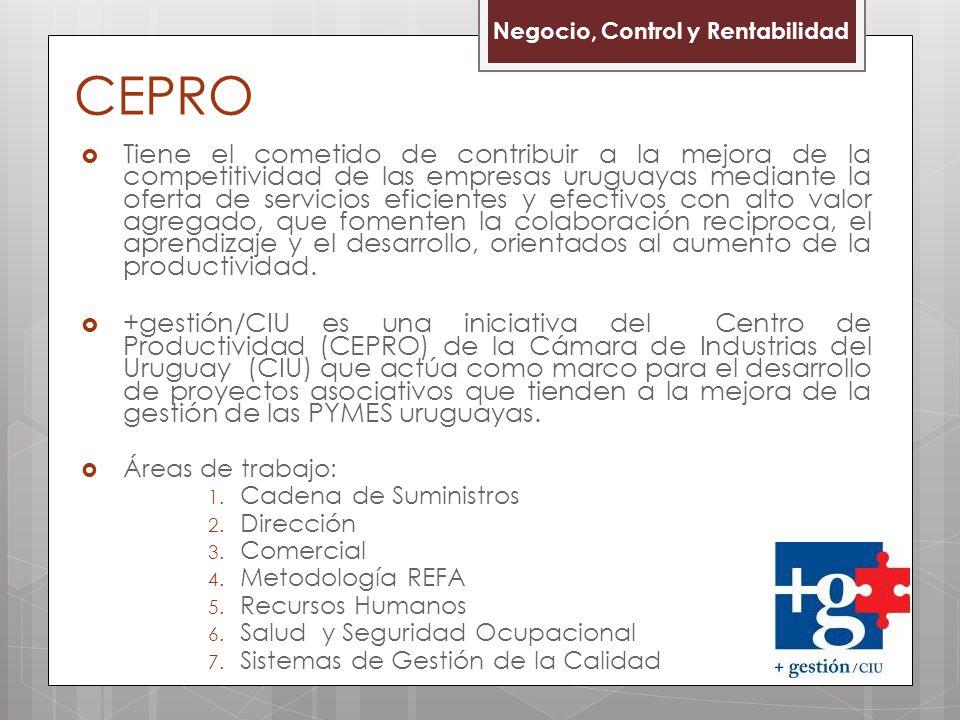 CEPRO Negocio, Control y Rentabilidad.