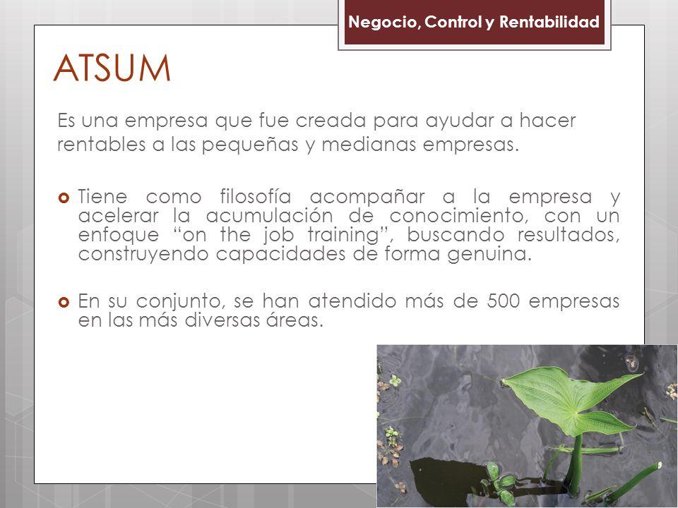 ATSUM Negocio, Control y Rentabilidad. Es una empresa que fue creada para ayudar a hacer rentables a las pequeñas y medianas empresas.