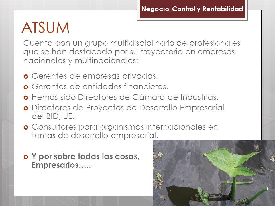 ATSUM Negocio, Control y Rentabilidad.