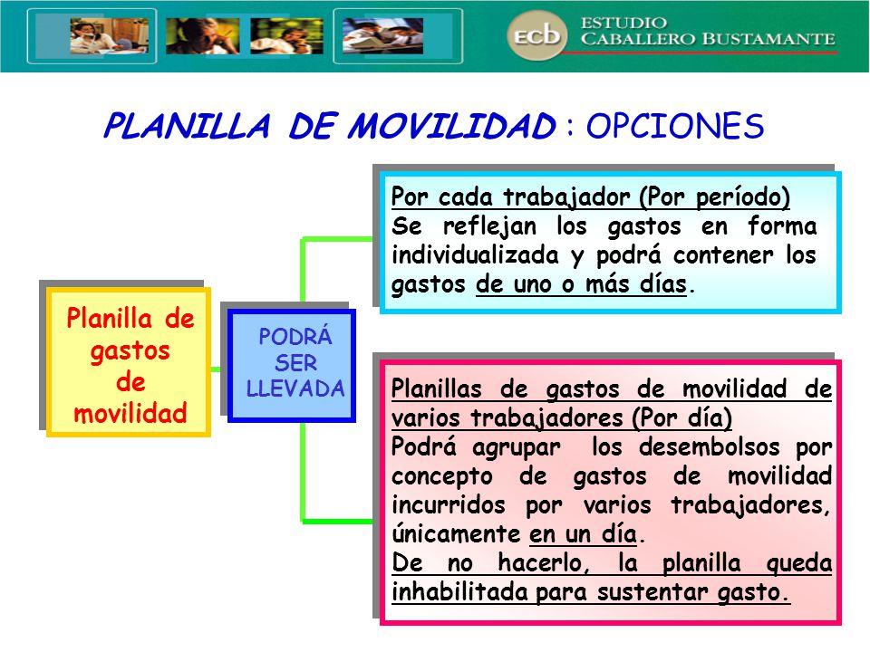 PLANILLA DE MOVILIDAD : OPCIONES