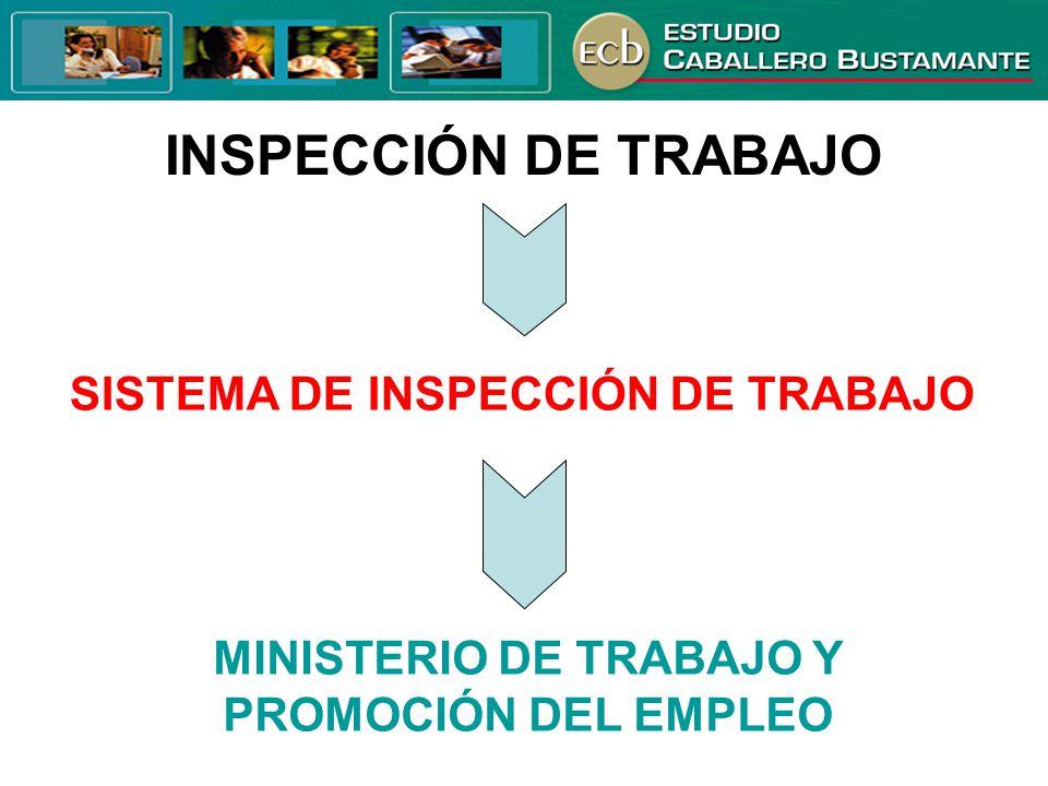 SISTEMA DE INSPECCIÓN DE TRABAJO
