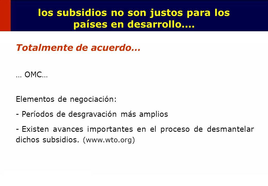 los subsidios no son justos para los países en desarrollo....