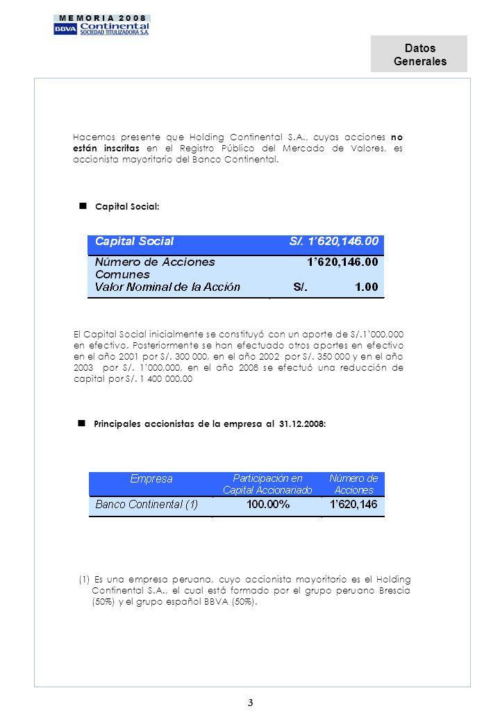 n Principales accionistas de la empresa al 31.12.2008: