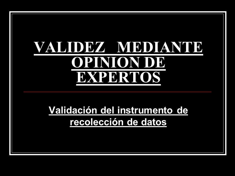 VALIDEZ MEDIANTE OPINION DE EXPERTOS