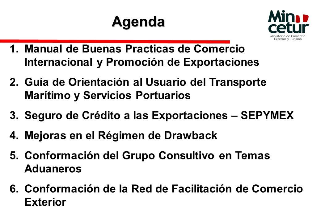 Agenda Manual de Buenas Practicas de Comercio Internacional y Promoción de Exportaciones.