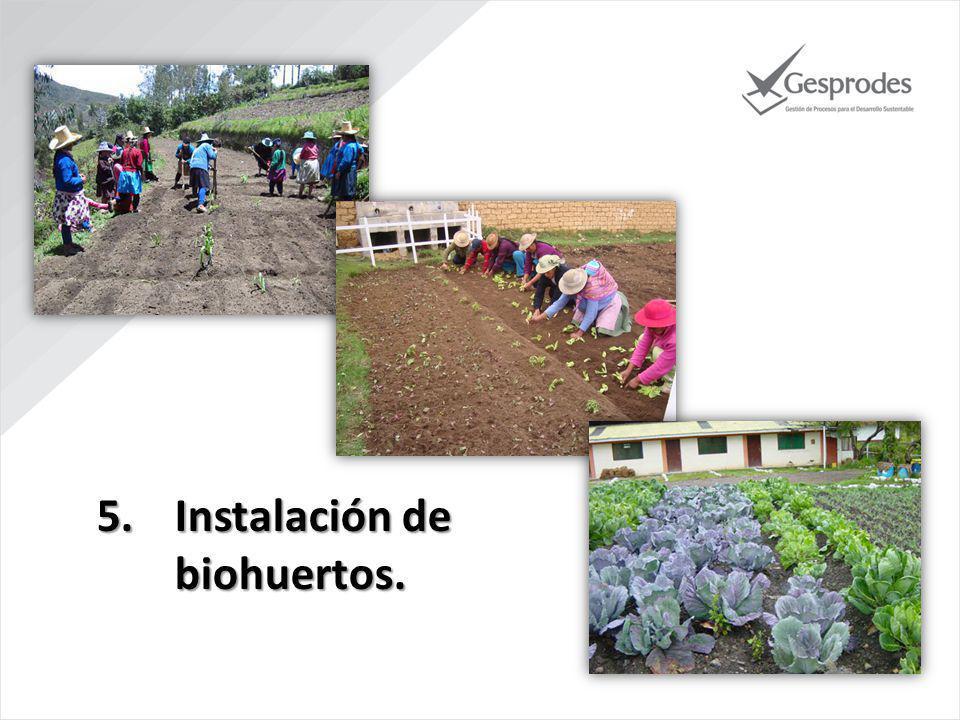 Instalación de biohuertos.