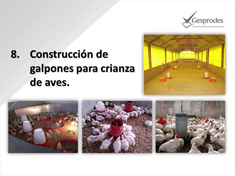 Construcción de galpones para crianza de aves.