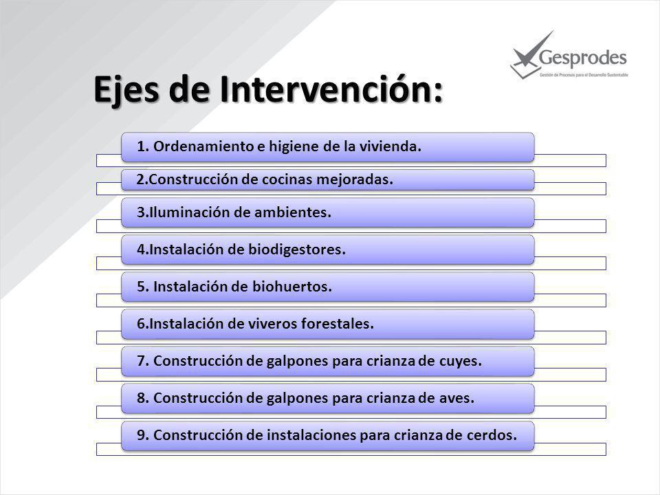 Ejes de Intervención: 1. Ordenamiento e higiene de la vivienda.