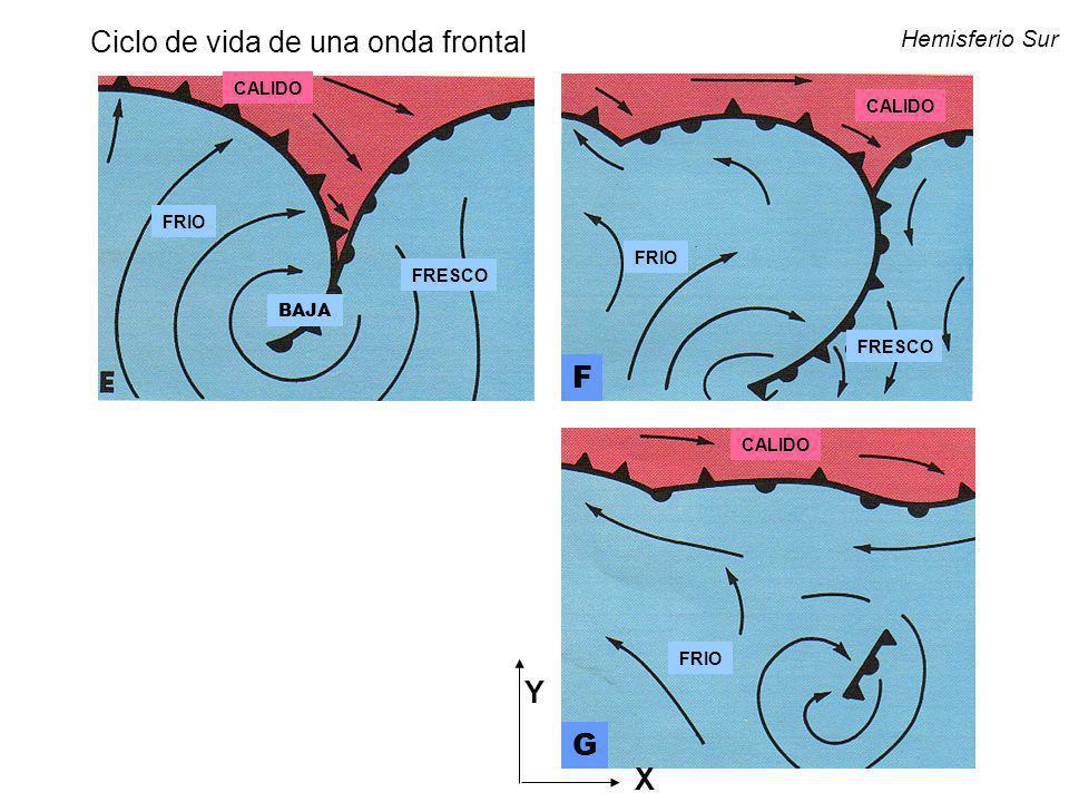 Ciclo de vida de una onda frontal