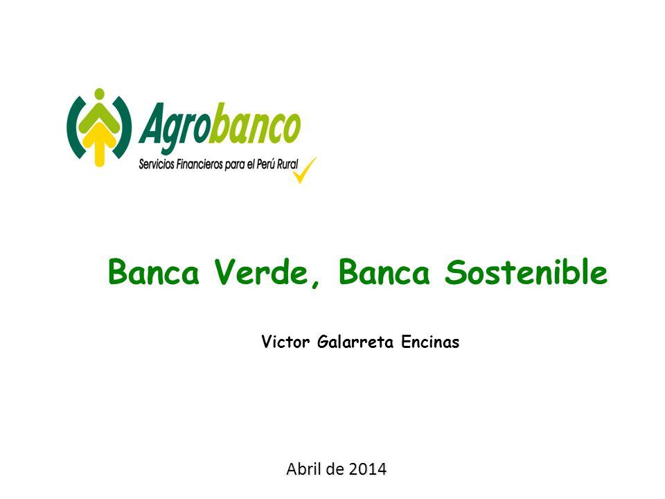 Victor Galarreta Encinas