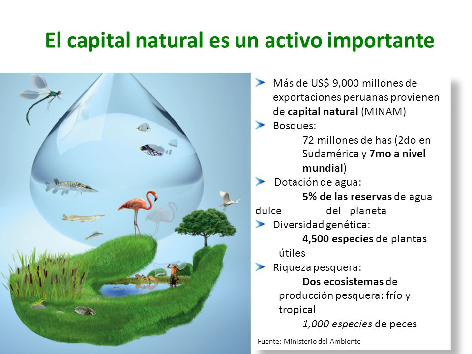 El capital natural es un activo importante