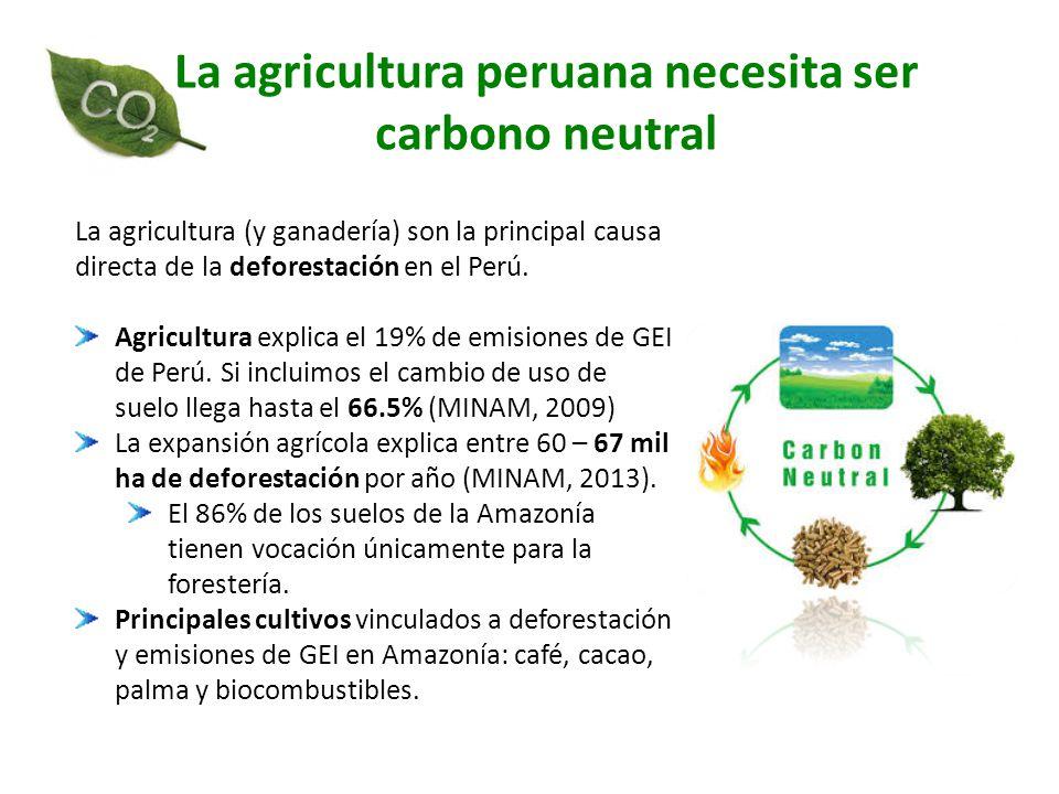 La agricultura peruana necesita ser carbono neutral